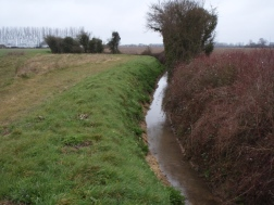Photo 2 / 2 - Ditch April 2013 post flood management with water-vole latrines and burrow previous summer.