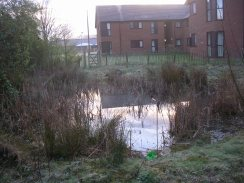 Photo 2 / 2 - Pond at East Surrey Hospital today (March 2012)