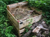 Photo 3 / 3 - Slow-worm - Compost Bin